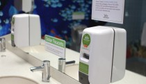 Green Cricket foaming hand soap