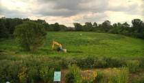 Before wetland restoration