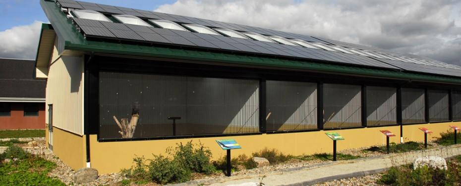 Entire solar aviary array