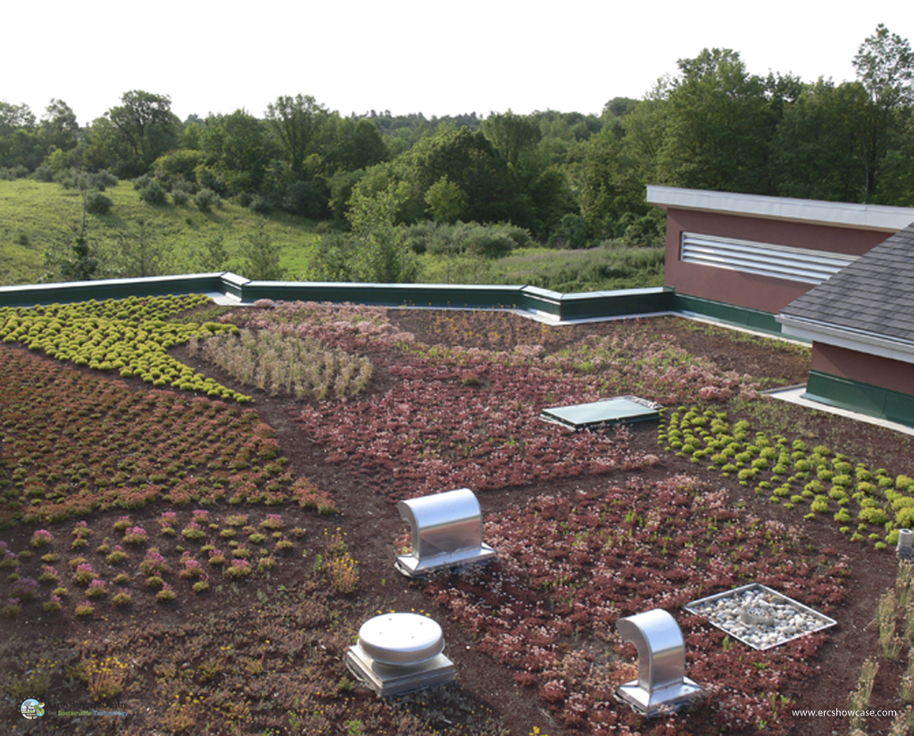 green roof technology What is a green roof a green roof is a layer of vegetation planted over a waterproofing system that is installed on top of a flat or slightly–sloped roof.