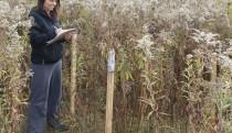 Soil sampling station
